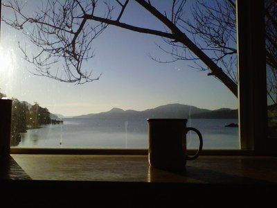 Darvill's Bookstore Coffee Cup Overlooking Bay